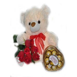 Peluche, chocolates Ferrero Rocher y 6 rosas rojas importadas